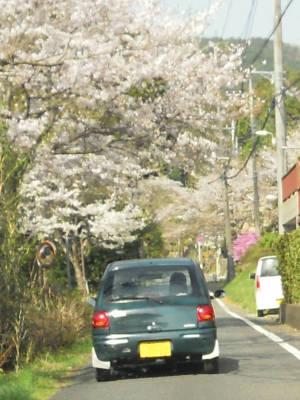 car_110416.jpg